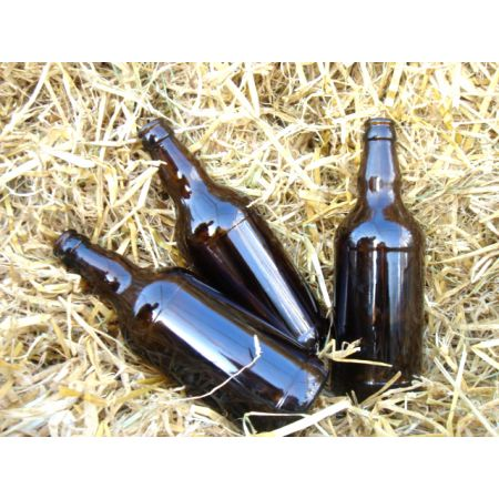 Brown Beer Bottles 500ml  (6)